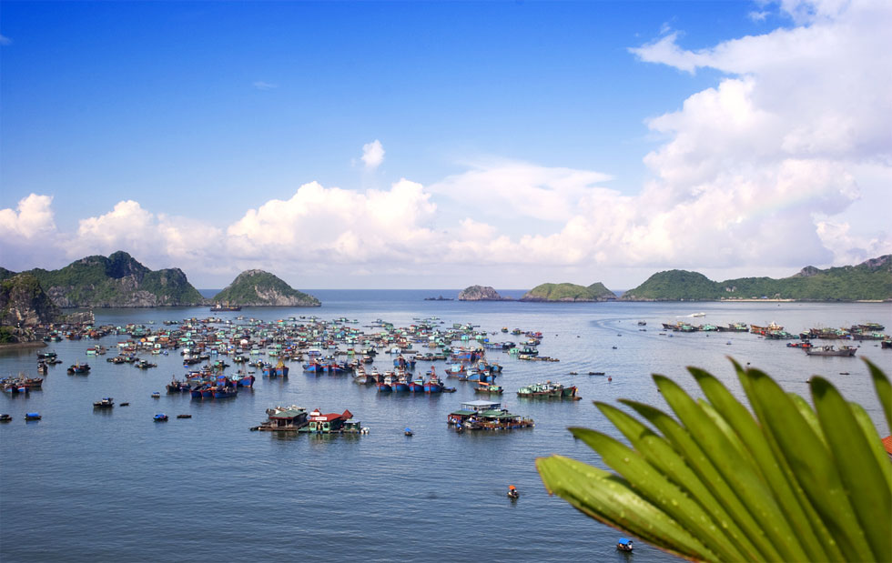 events in VIETNAM