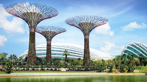 incentives in singapore